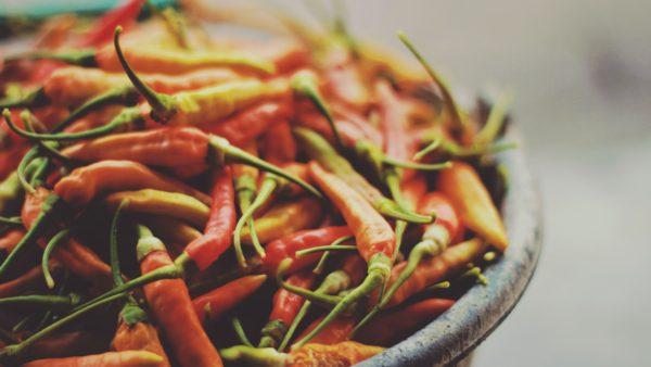 カラダを温める野菜