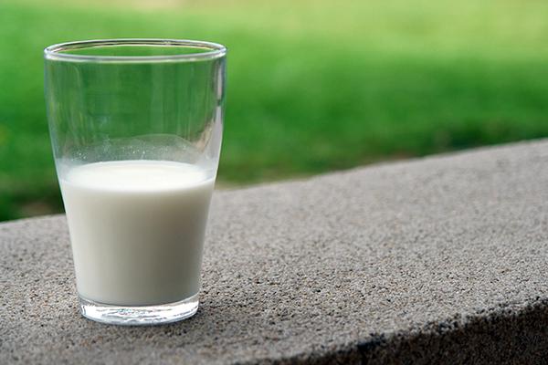 プロテインを多く含む牛乳