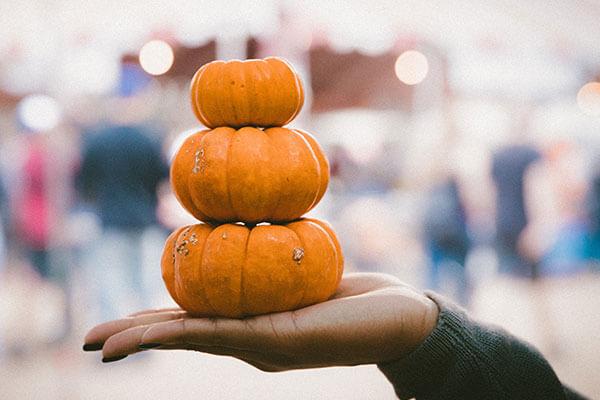 食欲の秋!!実は美容とダイエットにいい秋の食材は!?